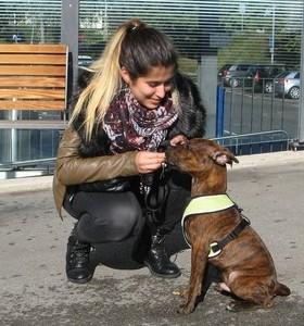Cours pratiques - Education Canine - Ecole Des Chiots - Cours-Chiot - Classe Chiots - Education chiot