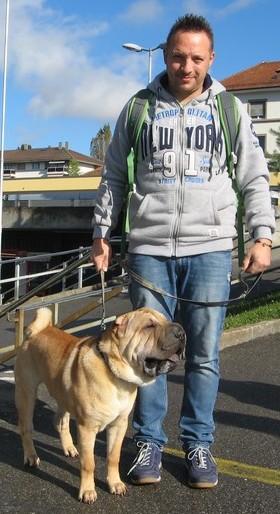 Stage de socialisation - Education Canine - Socialisation - Ecole Des Chiots - Cours-Chiot - Classe Chiots - Education chiot