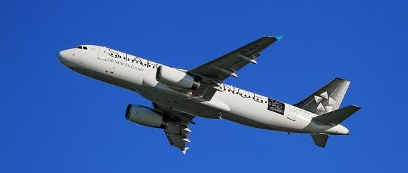 Voyage en avion avec votre chien - Voyager en avion avec son chien