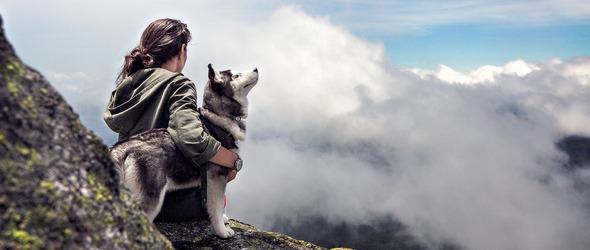 Voyager avec son chien - Conseils pour préparer le voyage de son chien en montagne