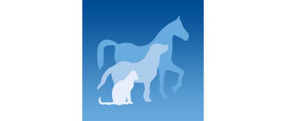 MyPet une application pour smartphones novatrice pour propriétaires de chiens