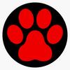 Ecole des chiots - Classe Chiot - Education chiot - Socialisation chiot - cours-chiots-cours-chiens-100
