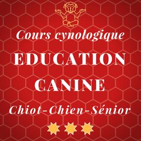 Cours éducation canine pour chiot jeune chien et chien adulte